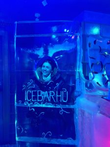 Die Icebar in Budapest