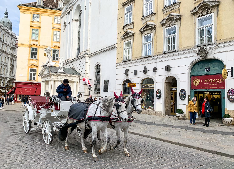 Pferdekutsche in der Innenstadt von Wien